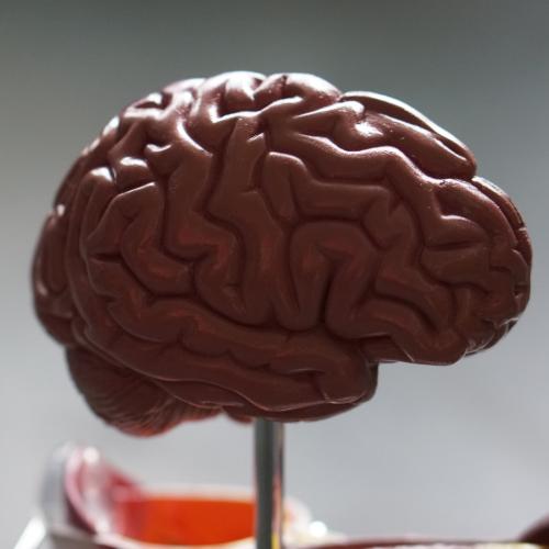 17. Kaksinkertaista aivokapasiteettisi